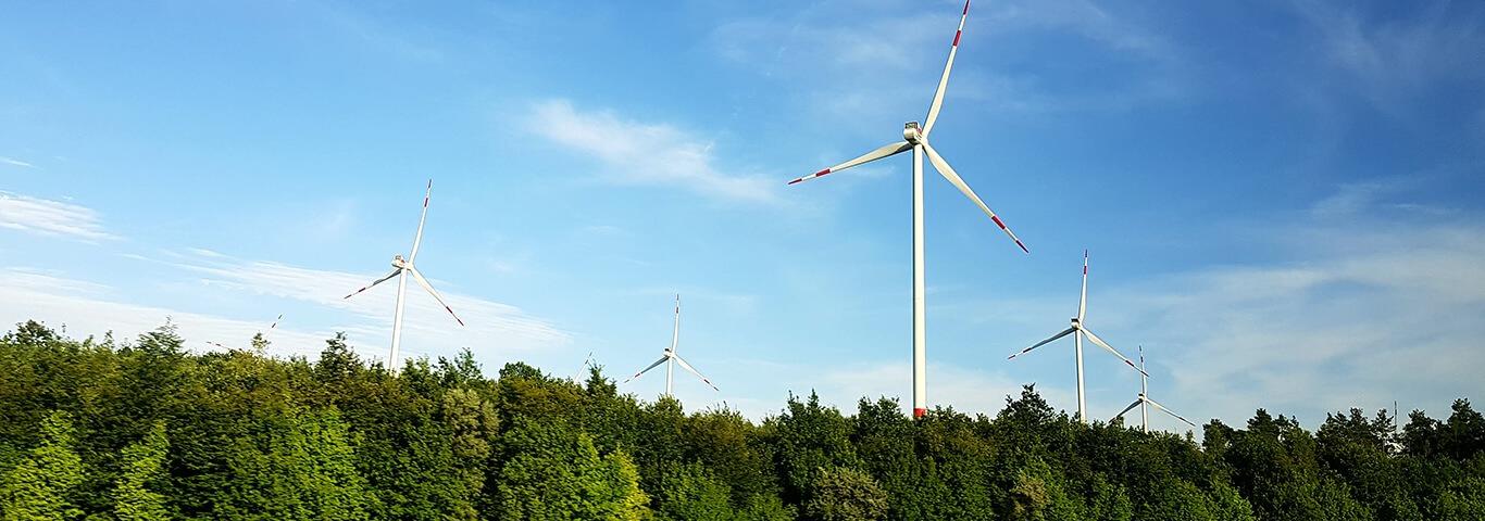 Erneuerbare Energien Wissensbeitrag Teaserbild