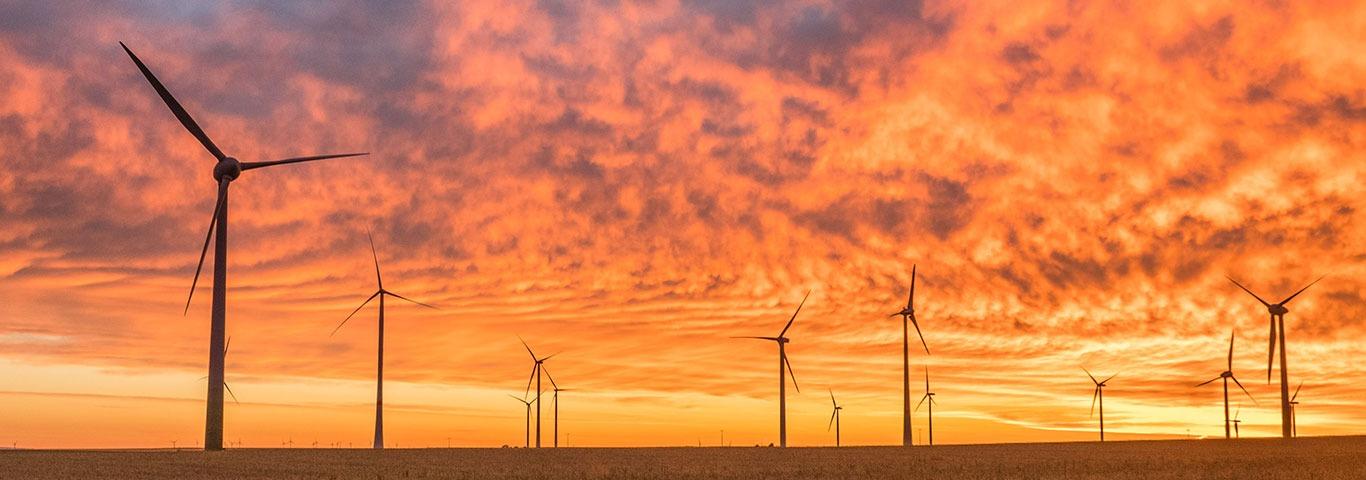 Windenergie: Wissen und Details -Teaserbild